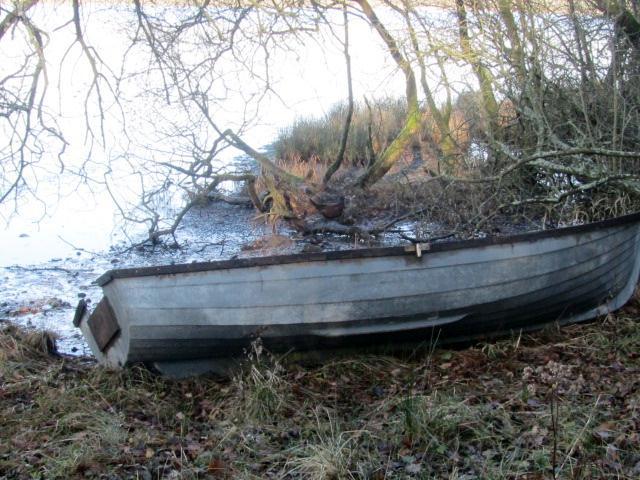 Loch Ken Nature reserve 042