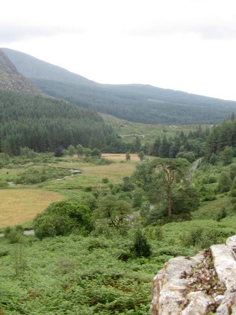 Grey Mares Tail 2 054