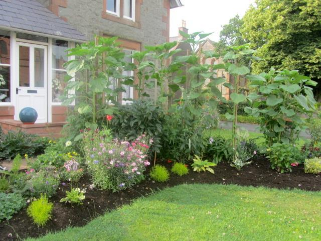 Garden Glory 006