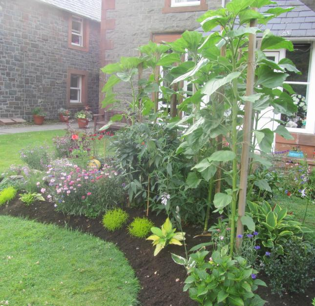 Garden Glory 009
