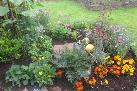 Garden Glory 022