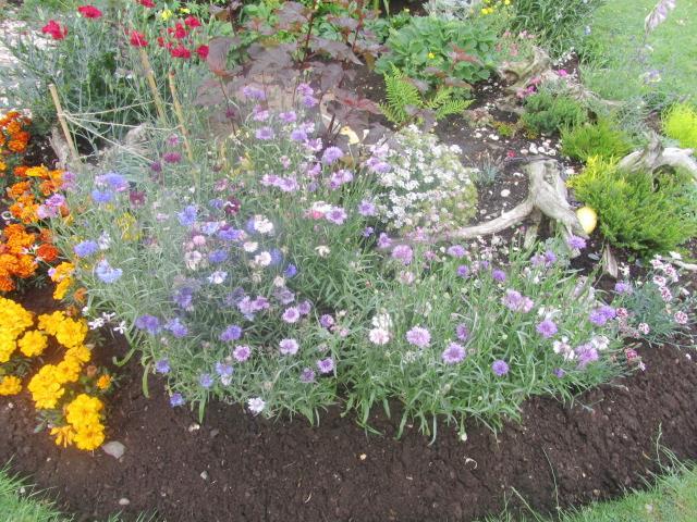 Garden Glory 034