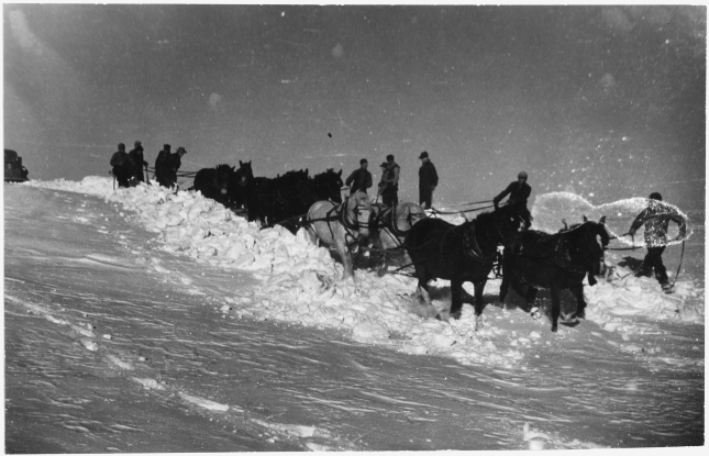 A_team_of_eight_horses_and_numerous_men_attempt_to_free_school_bus_from_snow_drifts_in_Allen,_SD_-_NARA_-_285533