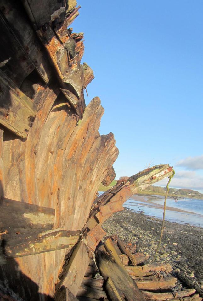 Sea Shanty 050