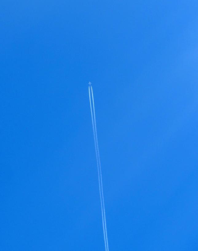 Ten Blue 025